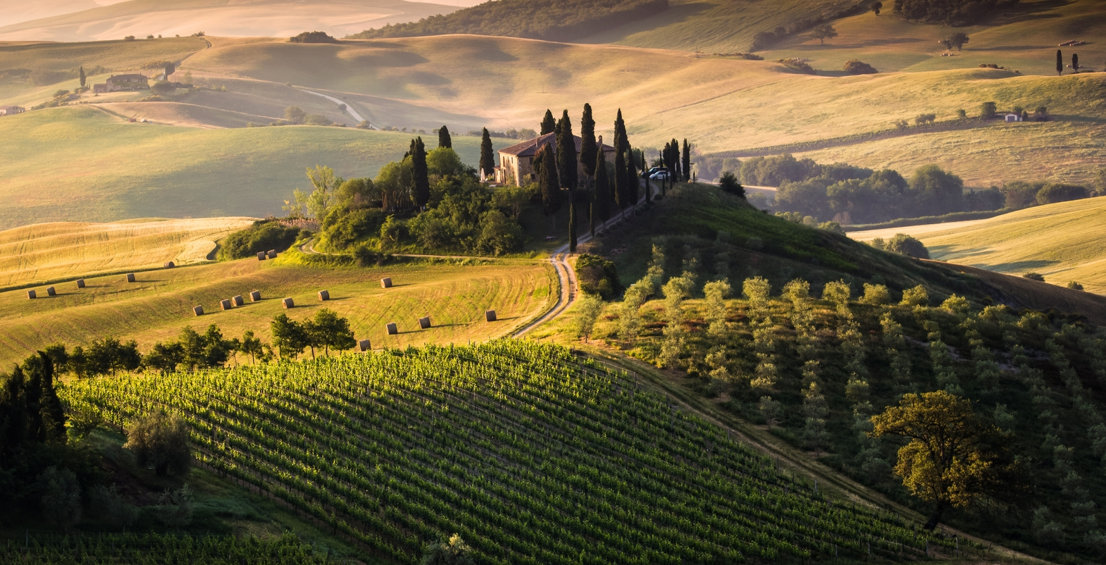 Majestic Vistas of Tuscany
